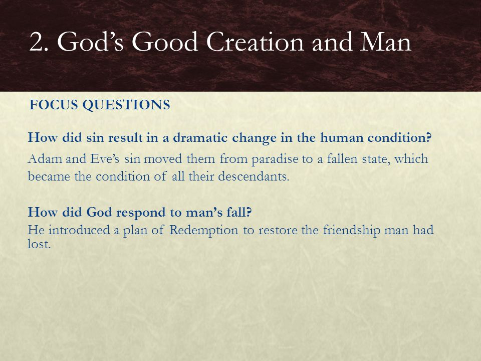CLOSURE Have the students write a paragraph summarizing what Genesis tells us in general about man's place in creation.