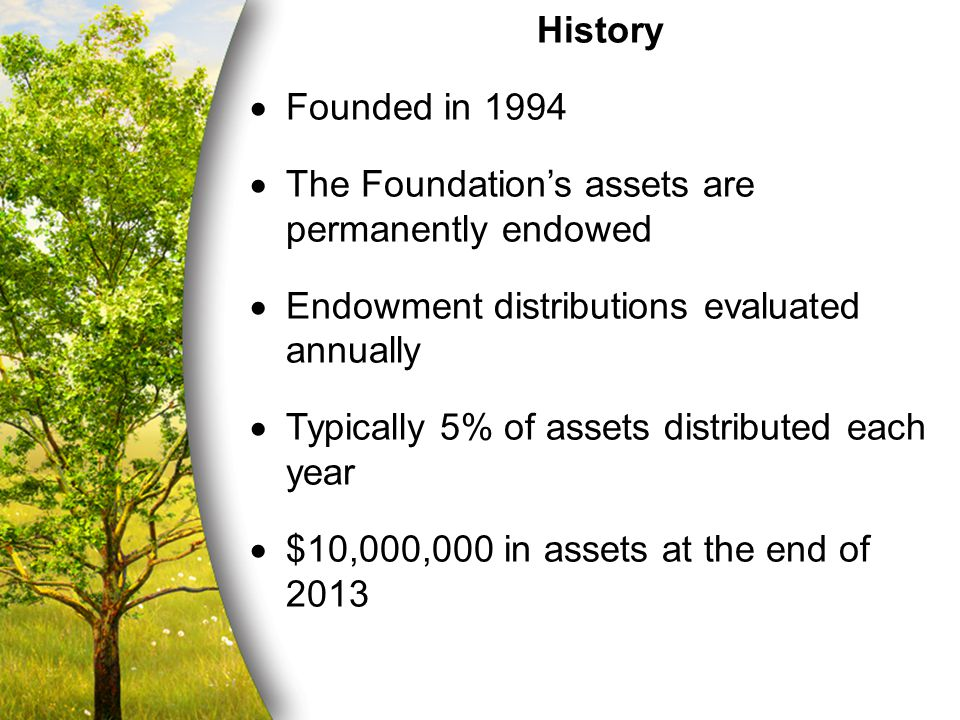 History  Founded in 1994  The Foundation's assets are permanently endowed  Endowment distributions evaluated annually  Typically 5% of assets distributed each year  $10,000,000 in assets at the end of 2013