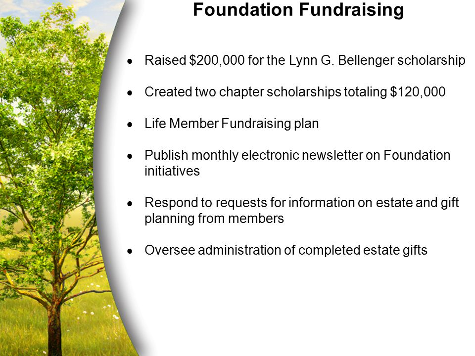 Foundation Fundraising  Raised $200,000 for the Lynn G. Bellenger scholarship  Created two chapter scholarships totaling $120,000  Life Member Fund
