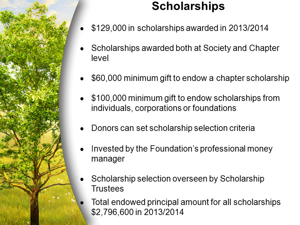 Scholarships  $129,000 in scholarships awarded in 2013/2014  Scholarships awarded both at Society and Chapter level  $60,000 minimum gift to endow
