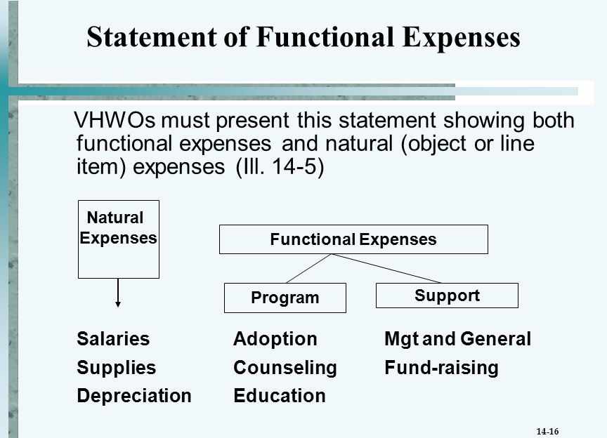 14-16 VHWOs must present this statement showing both functional expenses and natural (object or line item) expenses (Ill.