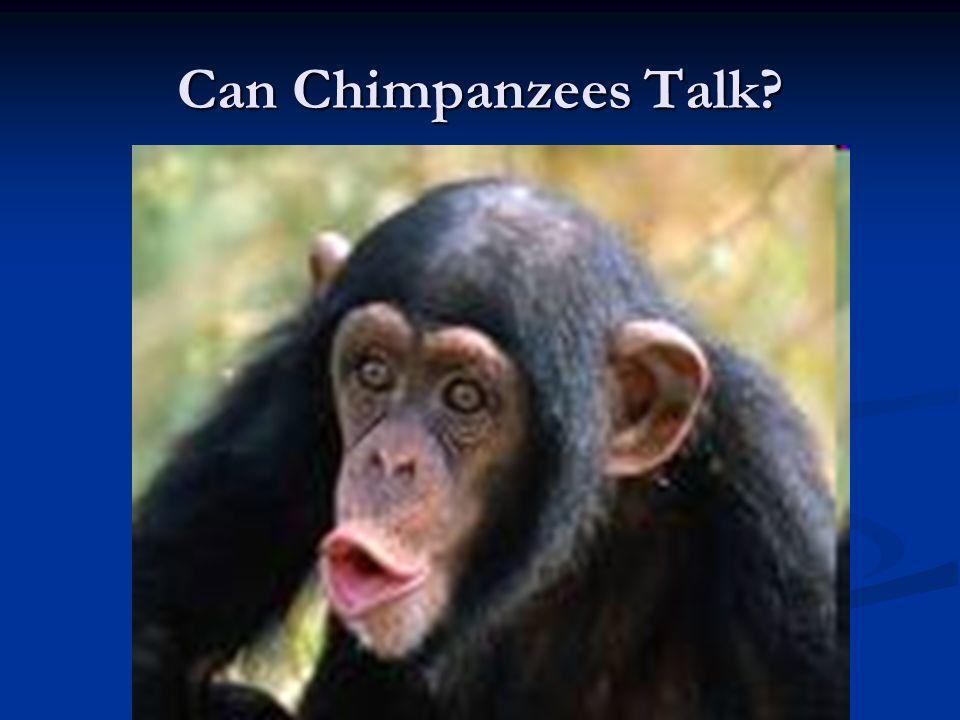 Can Chimpanzees Talk?