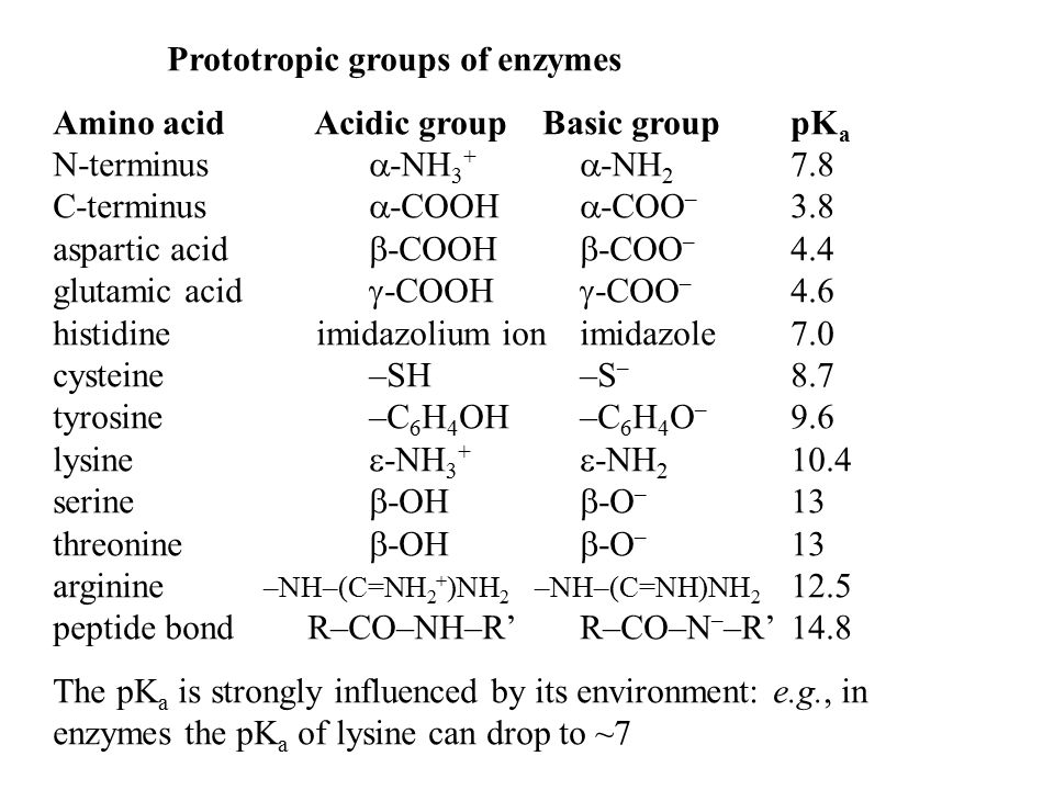 Prototropic groups of enzymes Amino acid Acidic group Basic grouppK a N-terminus  -NH 3 +  -NH 2 7.8 C-terminus  -COOH  -COO – 3.8 aspartic acid 