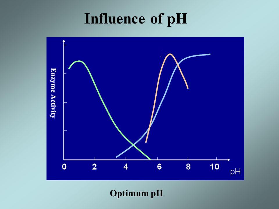 Influence of pH Optimum pH