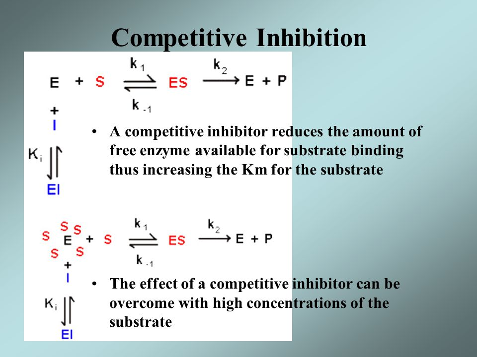 A competitive inhibitor reduces the amount of free enzyme available for substrate binding thus increasing the Km for the substrate The effect of a com