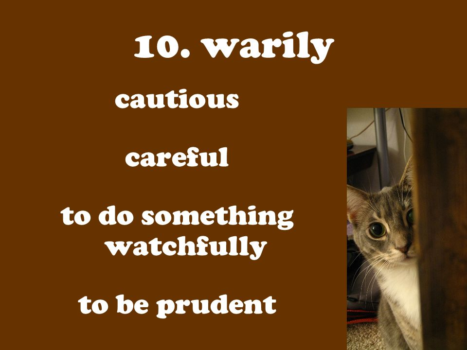 10. warily cautious careful to do something watchfully to be prudent