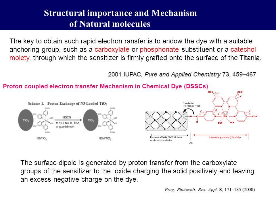 Bio-sensitized Solar Cell (BSSC) Seeram Ramakrishna, V.