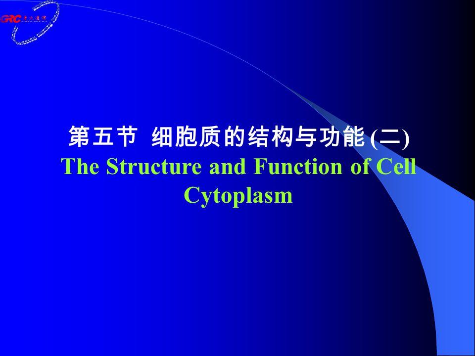 1.细胞的能量转换 : 线粒体 Energy Conversion: Mitochondria 2.