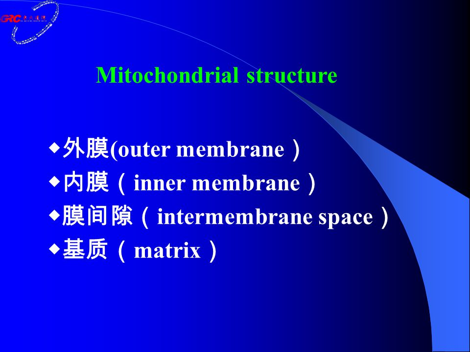 Outer membrane: Contains channel-forming protein, called Porin.