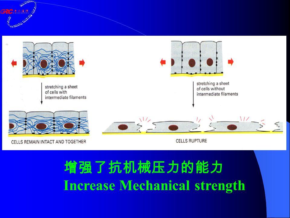 增强了抗机械压力的能力 Increase Mechanical strength
