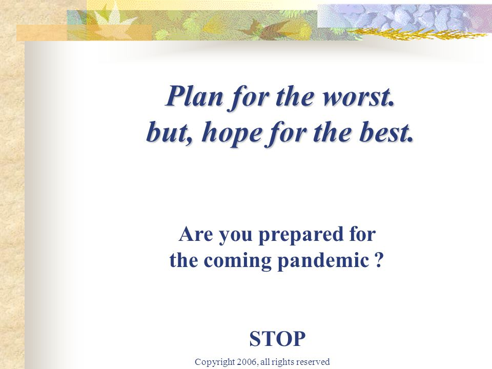 Copyright 2006, all rights reserved Plan for the worst. but, hope for the best. Are you prepared for the coming pandemic ? STOP