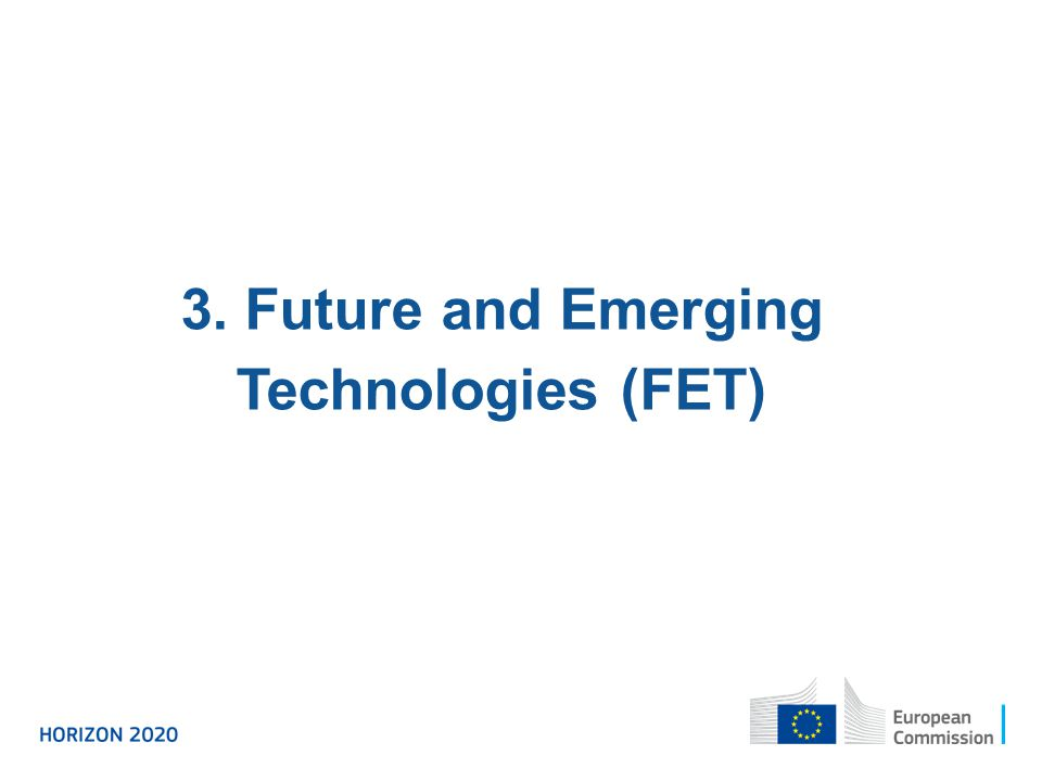 3. Future and Emerging Technologies (FET)