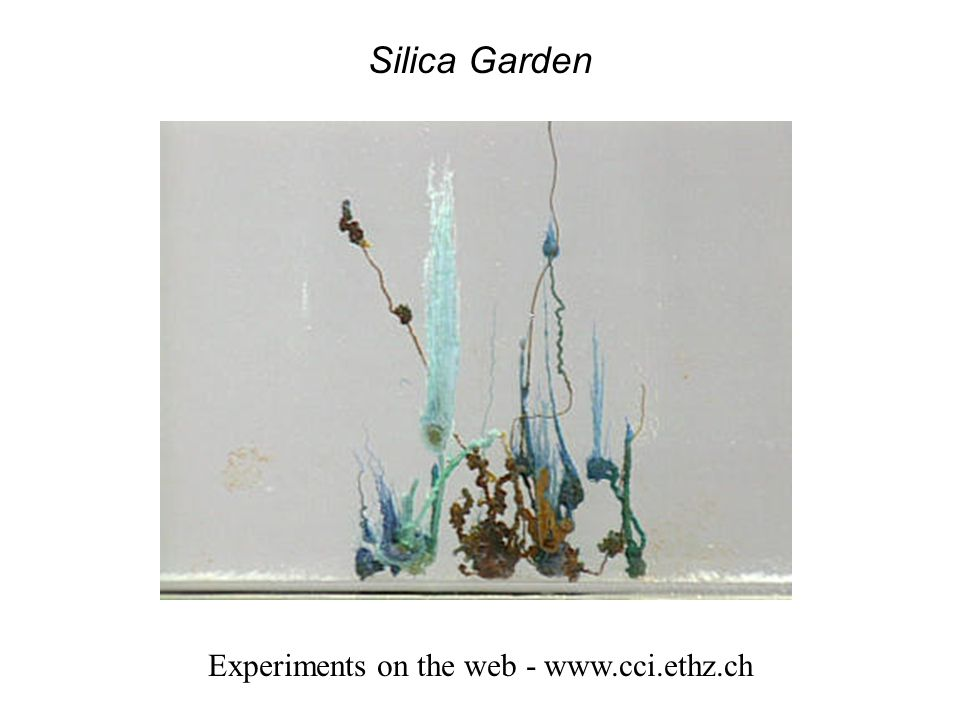 Silica Garden Experiments on the web - www.cci.ethz.ch