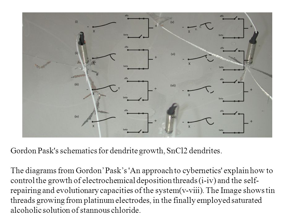 Gordon Pask s schematics for dendrite growth, SnCl2 dendrites.