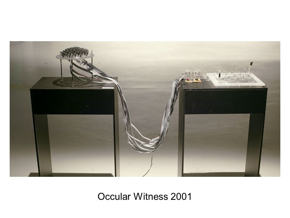 Occular Witness 2001