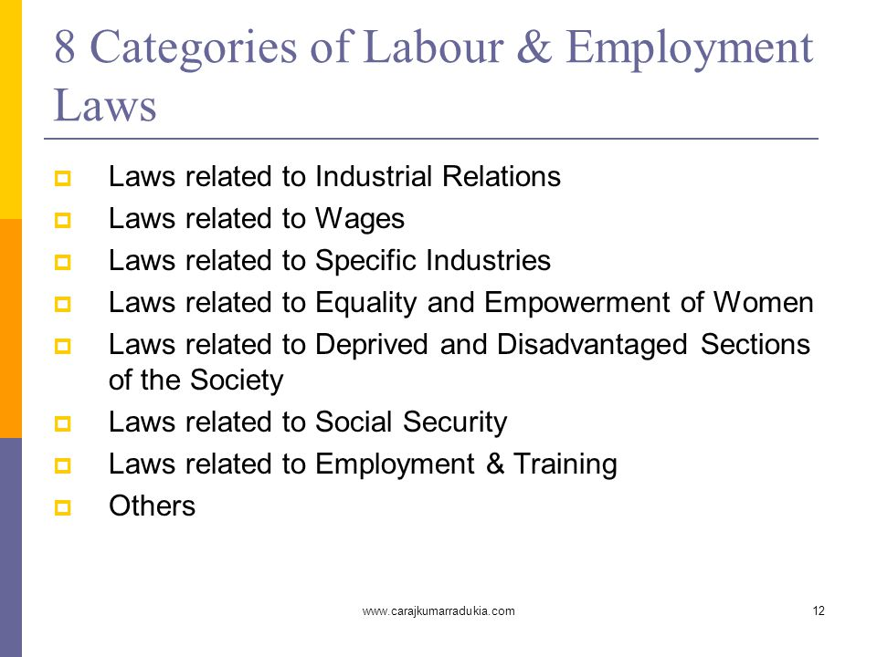 www.carajkumarradukia.com12 8 Categories of Labour & Employment Laws  Laws related to Industrial Relations  Laws related to Wages  Laws related to Specific Industries  Laws related to Equality and Empowerment of Women  Laws related to Deprived and Disadvantaged Sections of the Society  Laws related to Social Security  Laws related to Employment & Training  Others