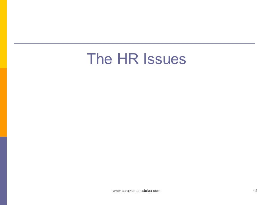 www.carajkumarradukia.com43 The HR Issues