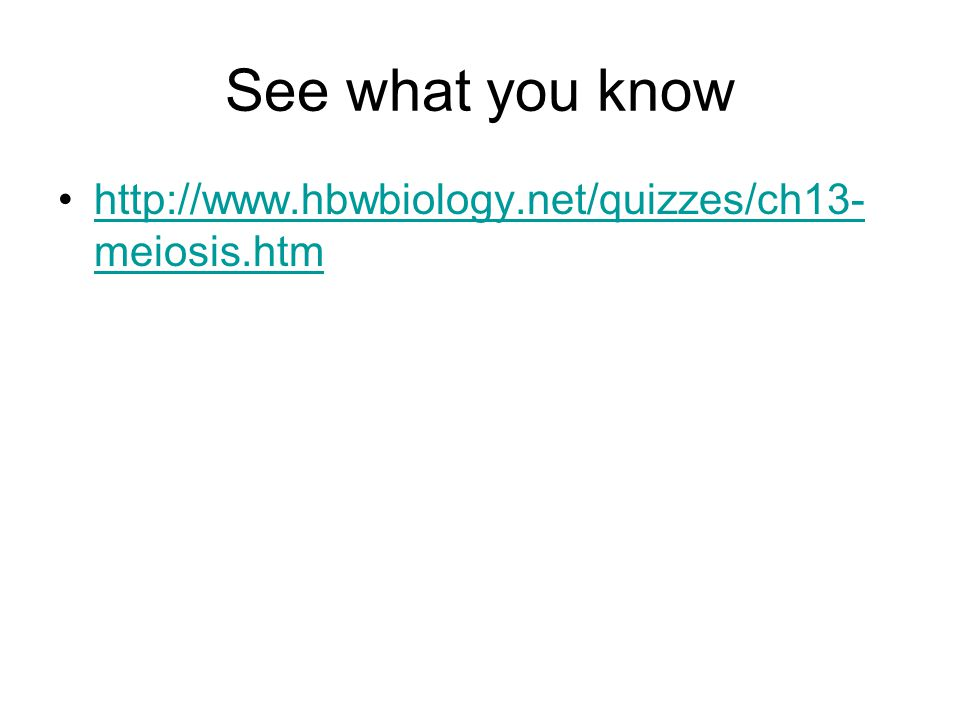 See what you know http://www.hbwbiology.net/quizzes/ch13- meiosis.htmhttp://www.hbwbiology.net/quizzes/ch13- meiosis.htm