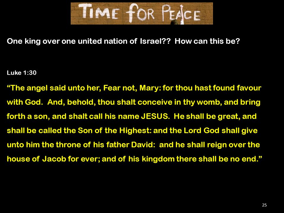25 One king over one united nation of Israel . How can this be.
