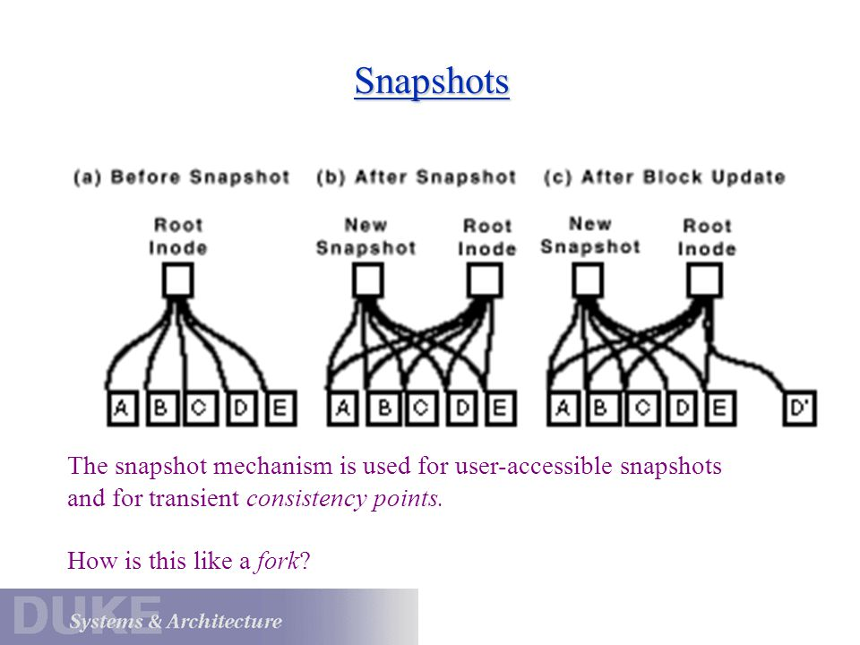Snapshots The snapshot mechanism is used for user-accessible snapshots and for transient consistency points. How is this like a fork?
