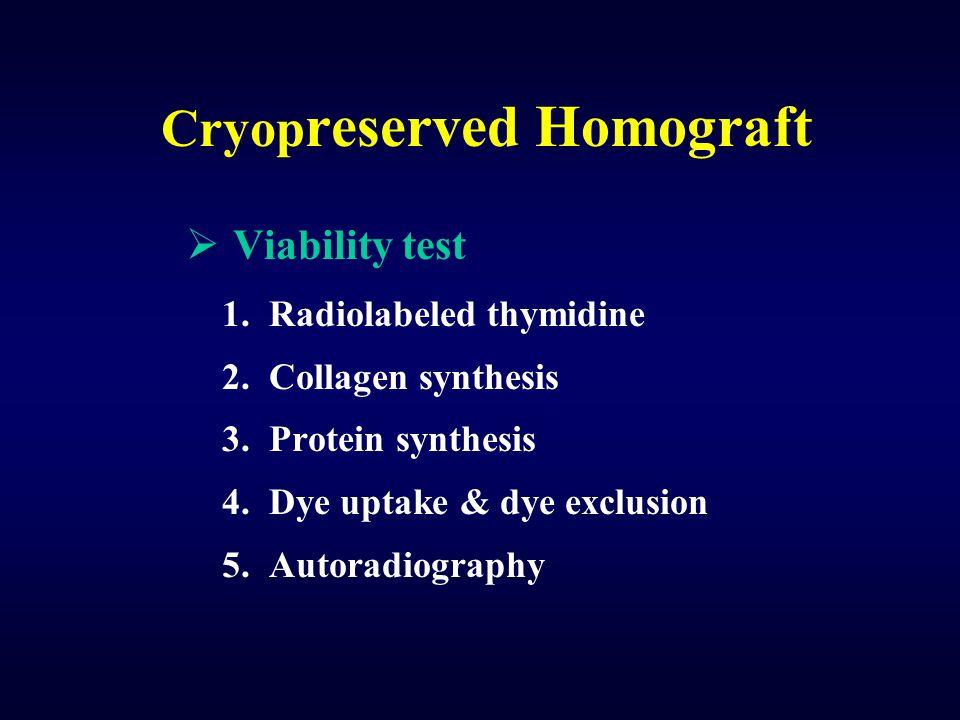 Cryop reserved Homograft  Viability test 1. Radiolabeled thymidine 2. Collagen synthesis 3. Protein synthesis 4. Dye uptake & dye exclusion 5. Autora