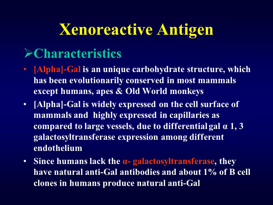Xenoreactive Antigen  Characteristics [Alpha]-Gal is an unique carbohydrate structure, which has been evolutionarily conserved in most mammals except