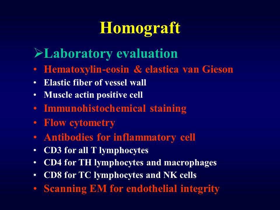 Homograft  Laboratory evaluation Hematoxylin-eosin & elastica van Gieson Elastic fiber of vessel wall Muscle actin positive cell Immunohistochemical