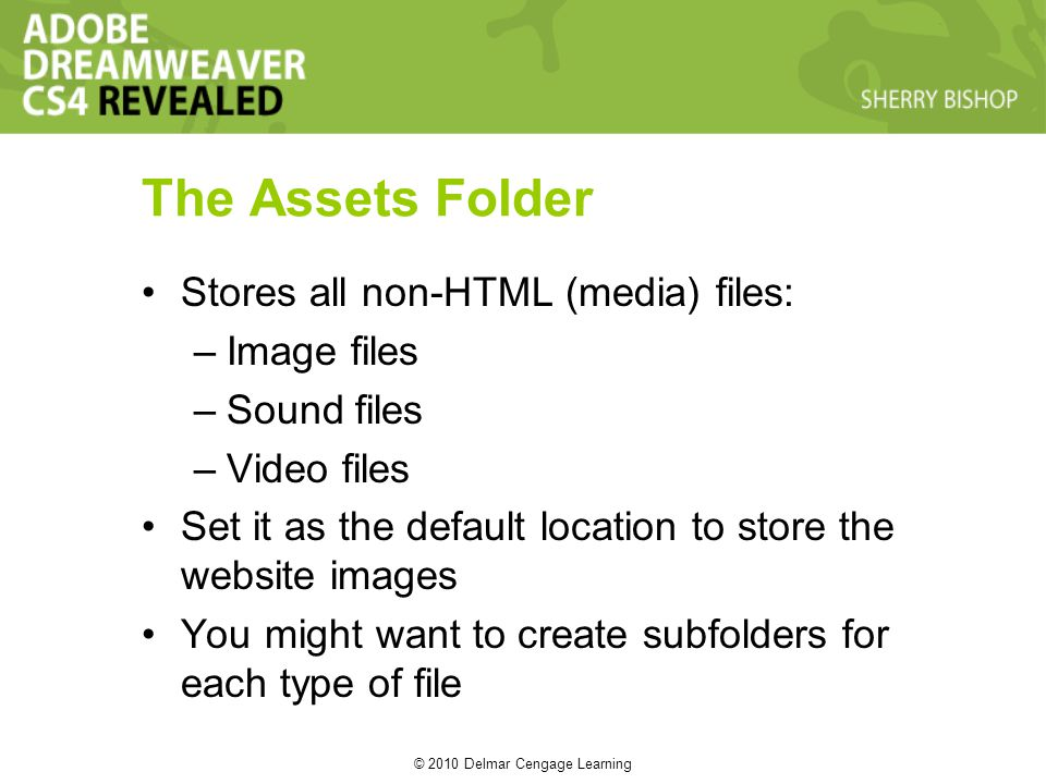 © 2010 Delmar Cengage Learning The Assets Folder Stores all non-HTML (media) files: –Image files –Sound files –Video files Set it as the default location to store the website images You might want to create subfolders for each type of file