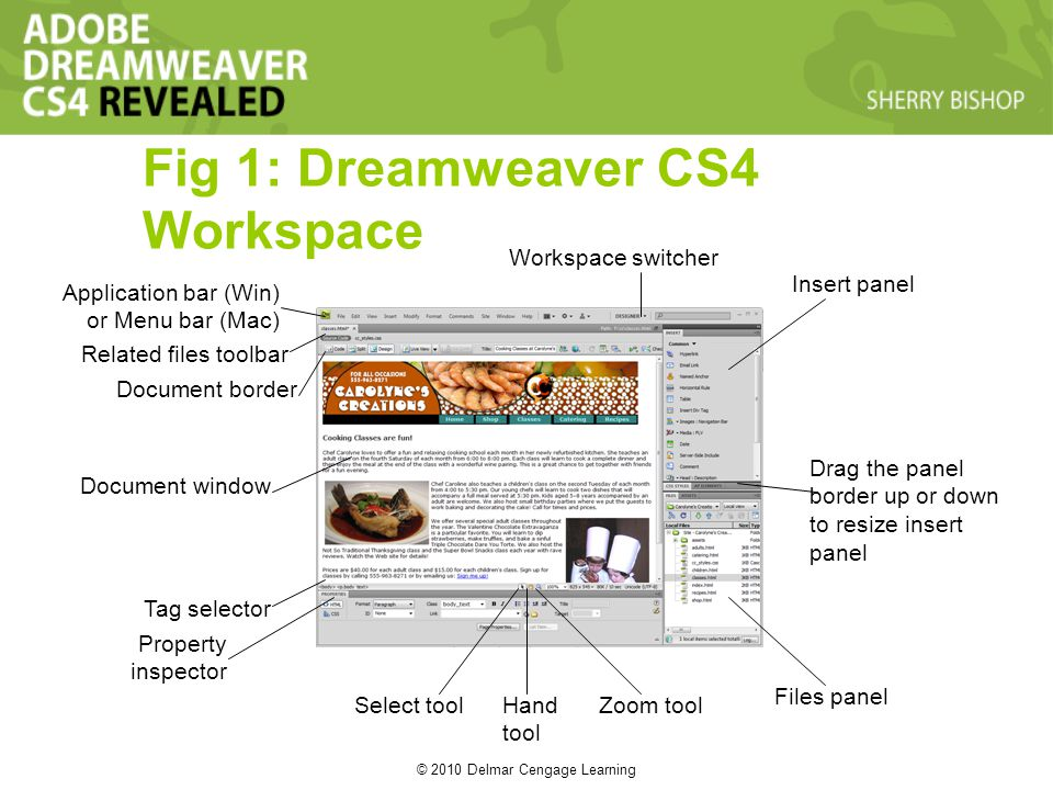© 2010 Delmar Cengage Learning Fig 1: Dreamweaver CS4 Workspace Property inspector Tag selector Document window Document border Related files toolbar Application bar (Win) or Menu bar (Mac) Workspace switcher Insert panel Files panel Zoom toolHand tool Select tool Drag the panel border up or down to resize insert panel
