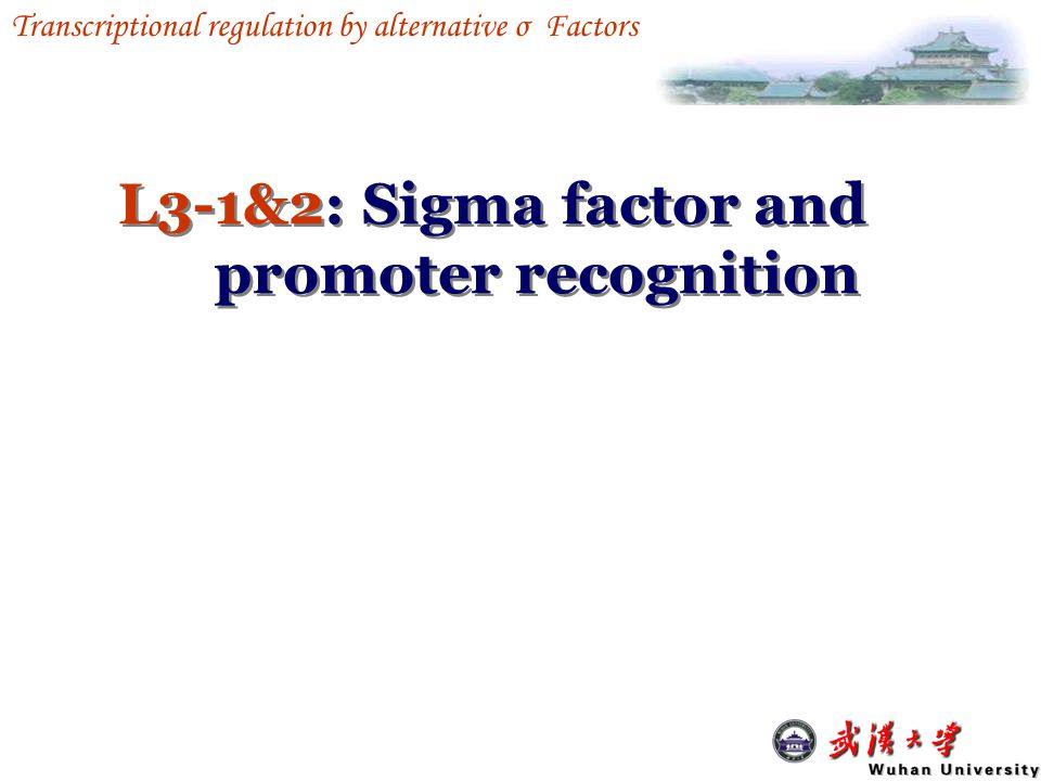 Regulation of Transcription in Prokaryotes L3L3 Transcriptional regulation by alternative σ Factors L3L3 Transcriptional regulation by alternative σ Factors 1.Sigma factor 2.Promoter recognition 3.Heat shock 4.Sporulation in B.