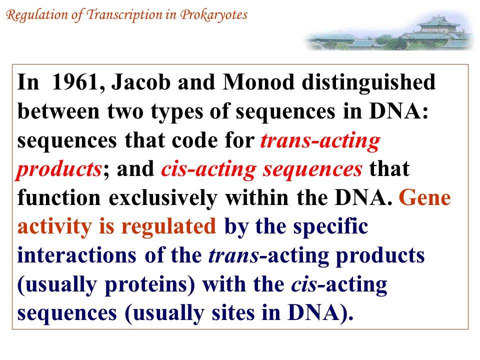 Operon Regulation of Transcription in Prokaryotes