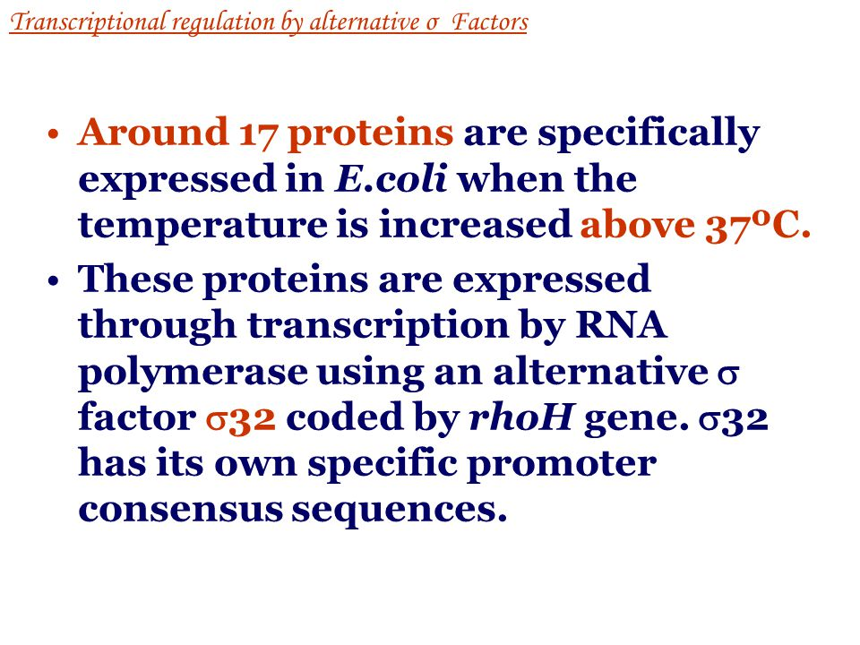 L3-3: Heat shock Transcriptional regulation by alternative σ Factors The response to heat shock is one example in E. coli where gene expression is alt