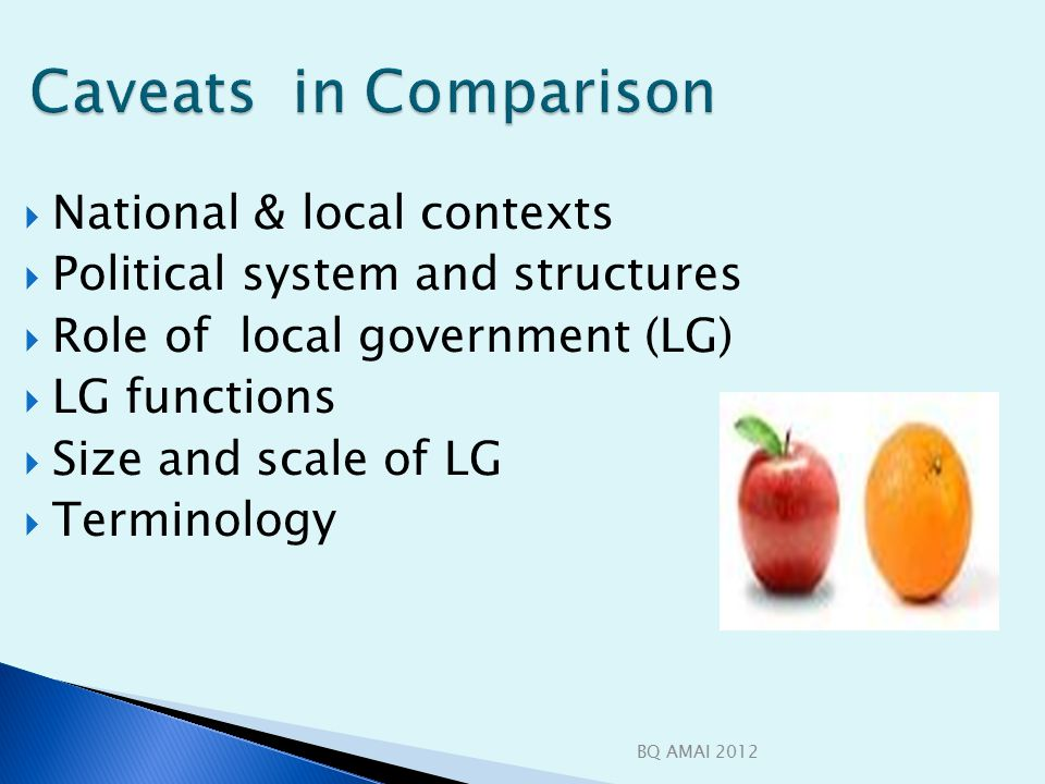 Caveats in Comparison Caveats in Comparison  National & local contexts  Political system and structures  Role of local government (LG)  LG functions  Size and scale of LG  Terminology