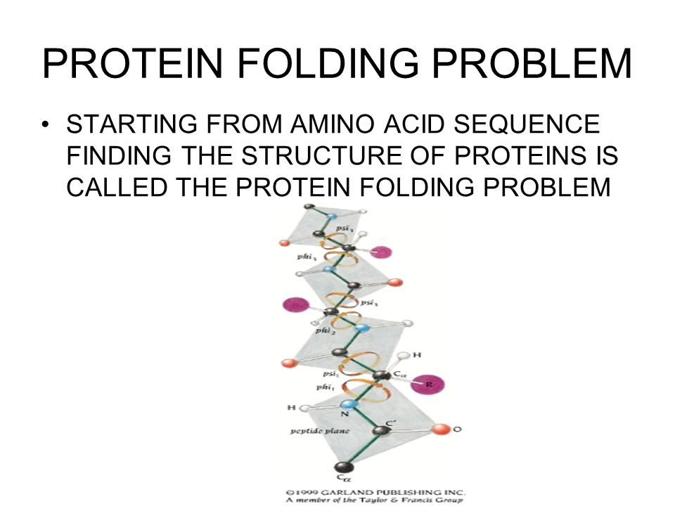 PROTEIN FOLDING PROBLEM STARTING FROM AMINO ACID SEQUENCE FINDING THE STRUCTURE OF PROTEINS IS CALLED THE PROTEIN FOLDING PROBLEM