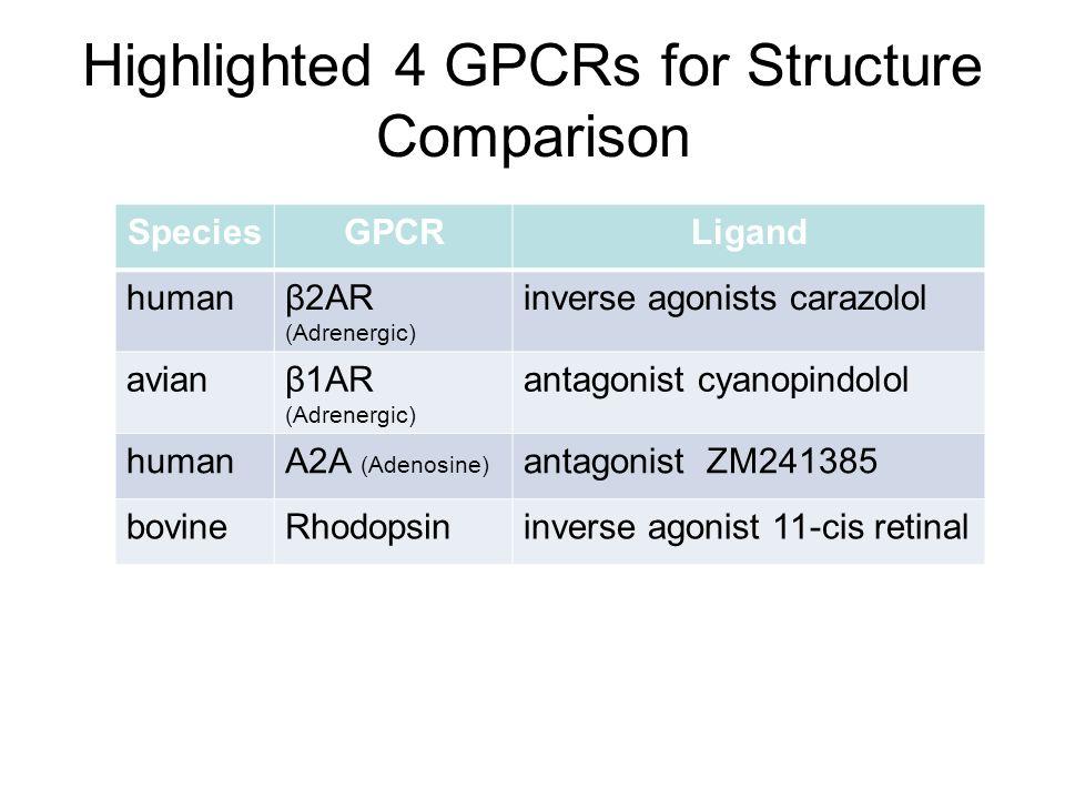 Highlighted 4 GPCRs for Structure Comparison SpeciesGPCRLigand humanβ2AR (Adrenergic) inverse agonists carazolol avianβ1AR (Adrenergic) antagonist cyanopindolol humanA2A (Adenosine) antagonist ZM241385 bovineRhodopsininverse agonist 11-cis retinal