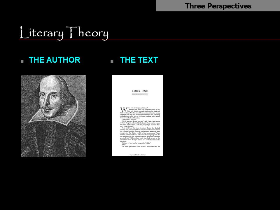 Literary Theory n THE AUTHOR Three Perspectives n THE TEXT