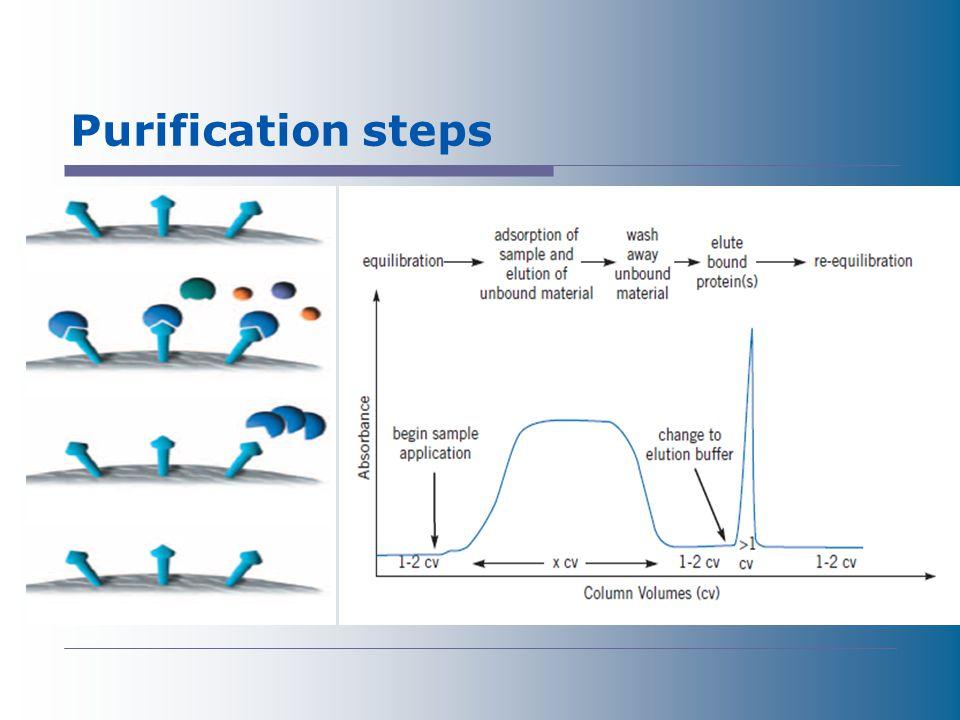 Purification steps