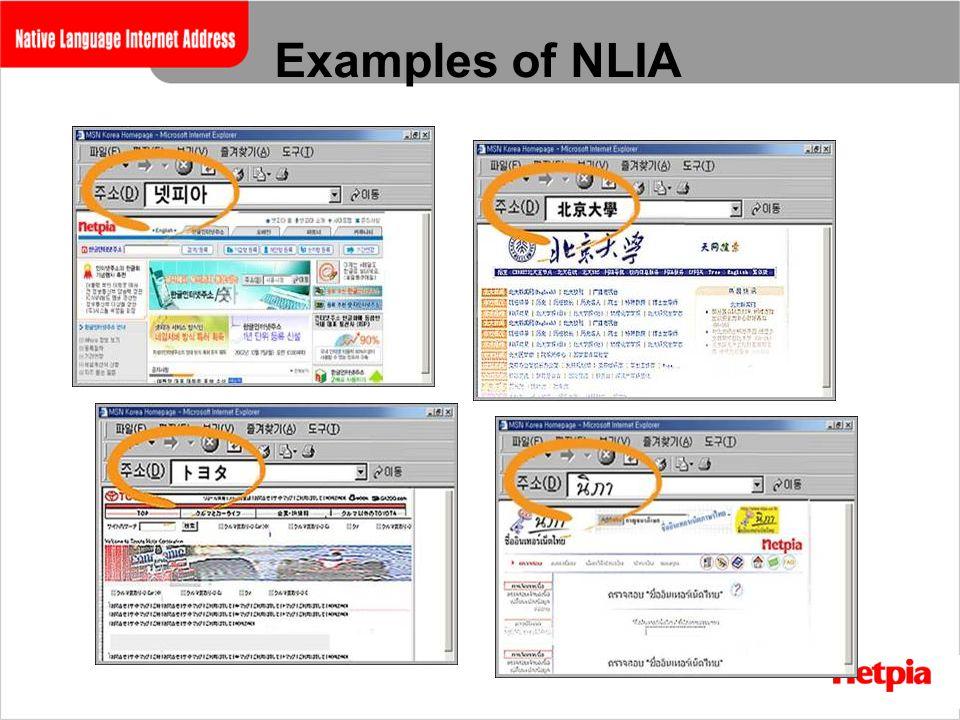 Examples of NLIA