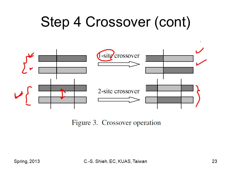 Spring, 2013C.-S. Shieh, EC, KUAS, Taiwan23 Step 4 Crossover (cont)