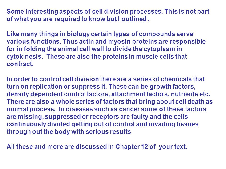 Some interesting aspects of cell division processes.