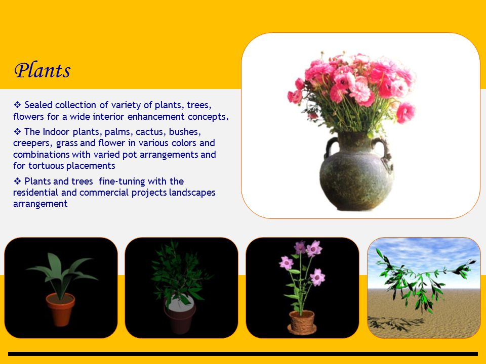 Plants  Sealed collection of variety of plants, trees, flowers for a wide interior enhancement concepts.