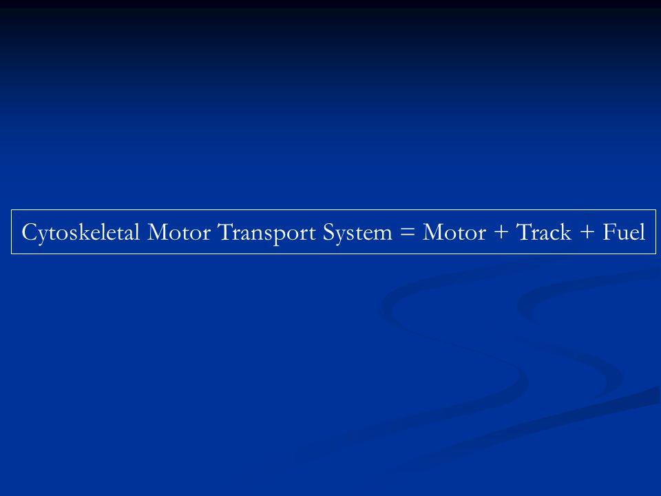 Cytoskeletal Motor Transport System = Motor + Track + Fuel