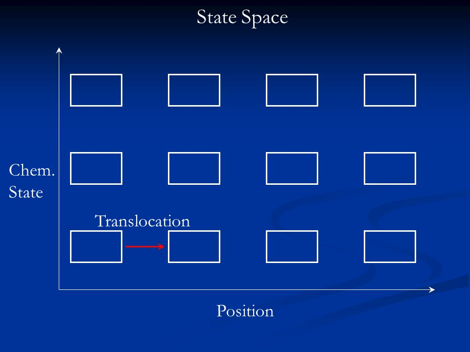 Translocation State Space Chem. State Position