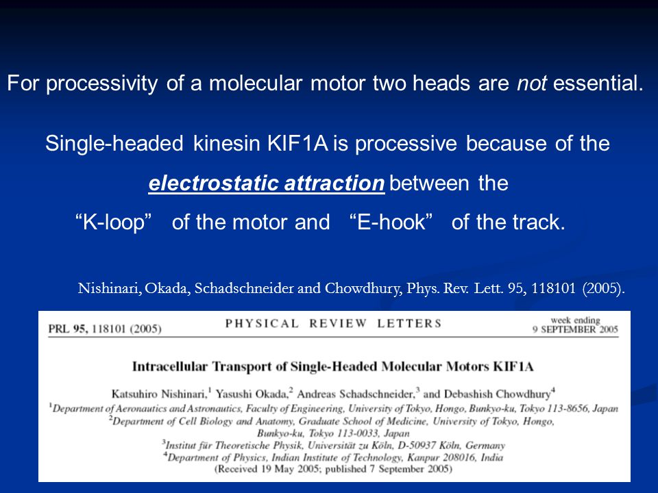 For processivity of a molecular motor two heads are not essential. Nishinari, Okada, Schadschneider and Chowdhury, Phys. Rev. Lett. 95, 118101 (2005).