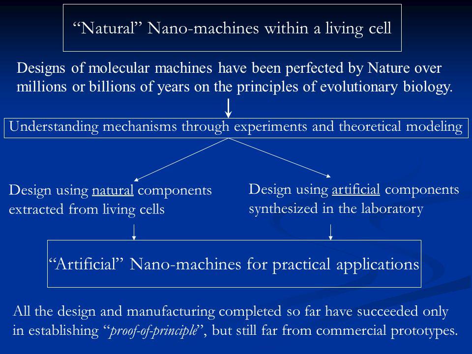 Examples of molecular motors II: Nucleic acid-based Motors