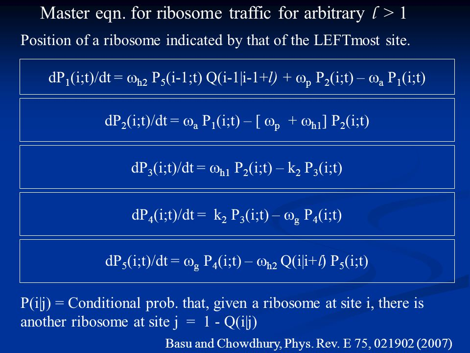 dP 1 (i;t)/dt =  h2 P 5 (i-1;t) Q(i-1|i-1+l) +  p P 2 (i;t) –  a P 1 (i;t) dP 2 (i;t)/dt =  a P 1 (i;t) – [  p +  h1 ] P 2 (i;t) dP 3 (i;t)/dt =  h1 P 2 (i;t) – k 2 P 3 (i;t) dP 4 (i;t)/dt = k 2 P 3 (i;t) –  g P 4 (i;t) dP 5 (i;t)/dt =  g P 4 (i;t) –  h2 Q(i|i+ l ) P 5 (i;t) Master eqn.