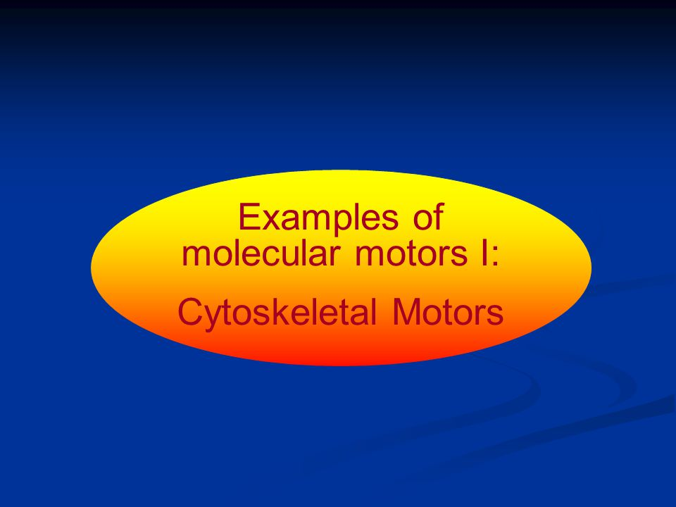 Examples of molecular motors I: Cytoskeletal Motors