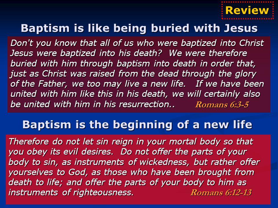 The Kingdom of God on Earth