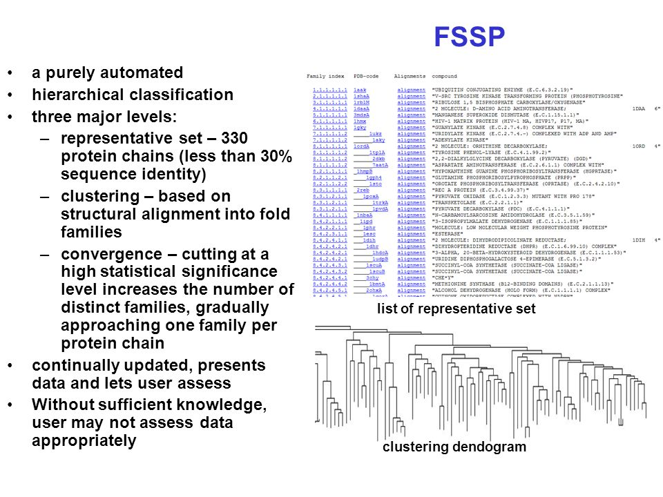 FSSP a purely automated hierarchical classification three major levels: –representative set – 330 protein chains (less than 30% sequence identity) –cl