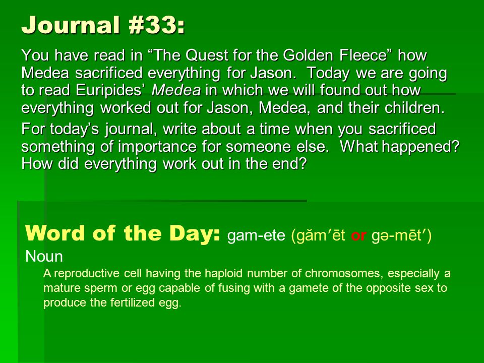 Journal #33: You have read in The Quest for the Golden Fleece how Medea sacrificed everything for Jason.